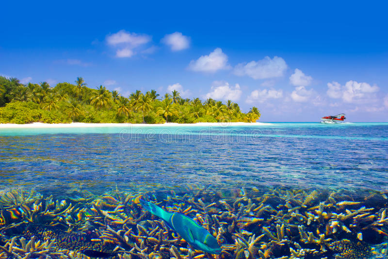 Sea Plane landing in The Maldives, Eden on Earth royalty free stock photos