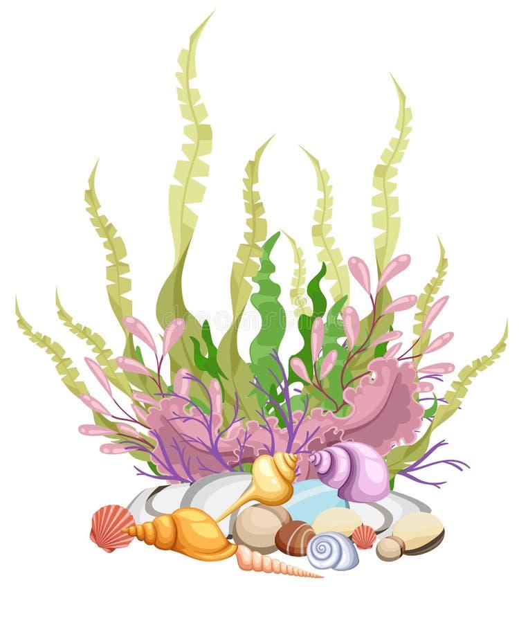 Sea plants and aquatic marine algae Seaweed set illustration. Yellow and brown, red and green aquarium.  royalty free illustration