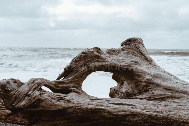 Sea, Rock, Coast, Shore stock photography