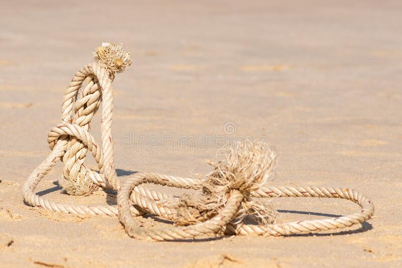 Sea rope lying on the sand Wallpaper royalty free stock photography