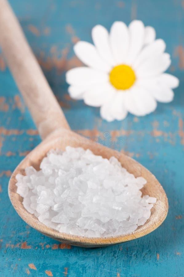 Sea Salt royalty free stock image
