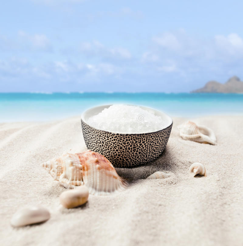 Sea salt and cockleshells. On a beach royalty free stock image