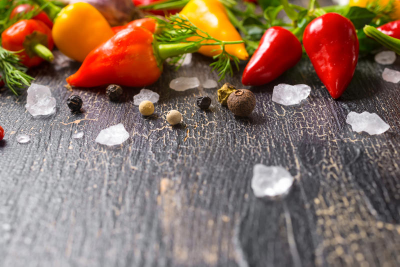 Sea salt, dry spices, yellow, red hot chili peppers, different g stock photo