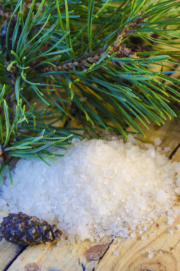 Sea salt with an extract of a coniferous tree stock photo