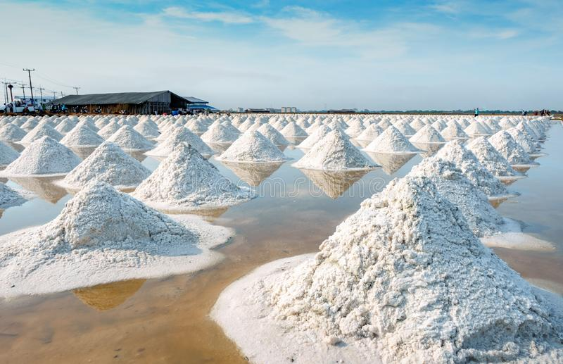 Sea salt farm and barn in Thailand. Organic sea salt. Raw material of salt industrial. Sodium Chloride. Solar evaporation system. Iodine source. Worker working stock photo
