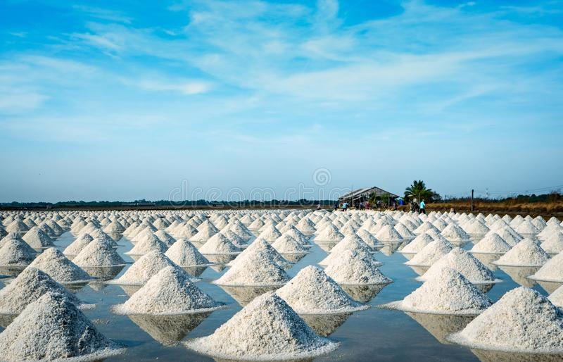 Sea salt farm and barn in Thailand. Organic sea salt. Raw material of salt industrial. Sodium Chloride. Solar evaporation system. Iodine source. Worker working royalty free stock photography