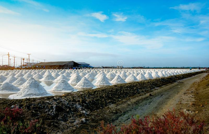 Sea salt farm and barn in Thailand. Organic sea salt. Raw material of salt industrial. Sodium Chloride. Solar evaporation system. Iodine source. Worker working stock photos