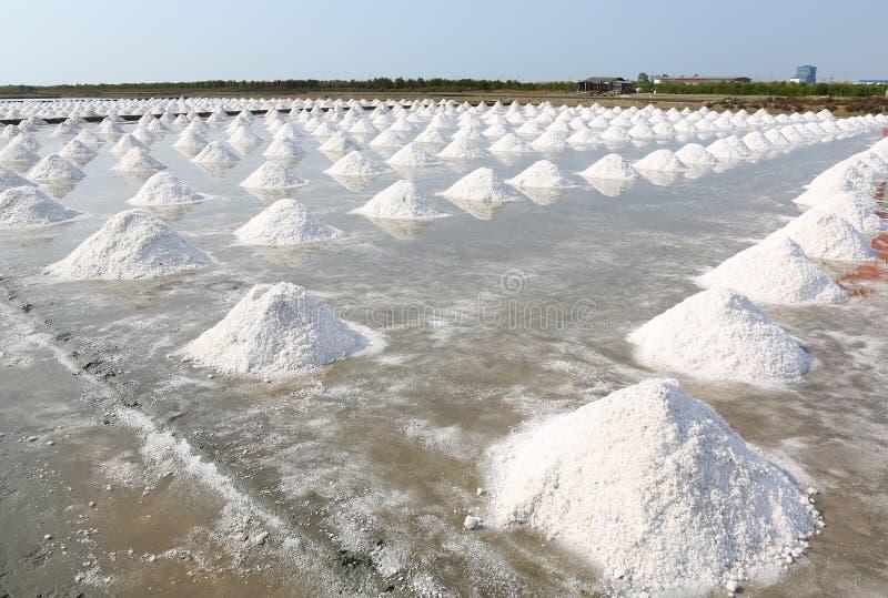 Sea salt farm in Thailand.  stock photography