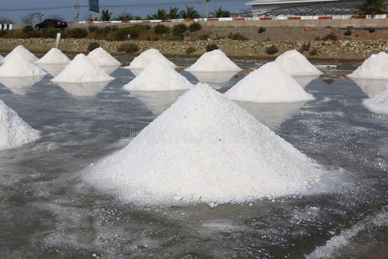 Sea salt farm in Thailand.  royalty free stock photos