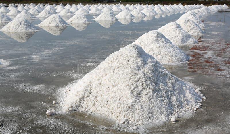 Sea salt farm in Thailand.  royalty free stock photography