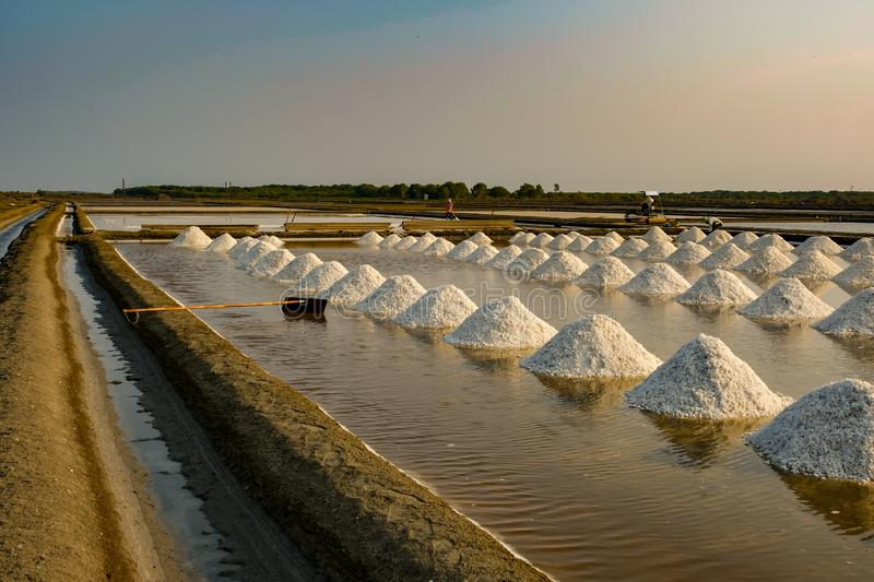 Sea salt field in Thailand. Agriculture asia background beautiful color crystal evaporated evaporation exploration farm food industry ingredient landscape royalty free stock photography