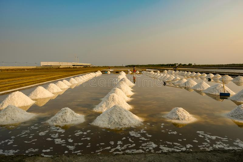 Sea salt field in Thailand. Agriculture asia background beautiful color crystal evaporated evaporation exploration farm food industry ingredient landscape stock images