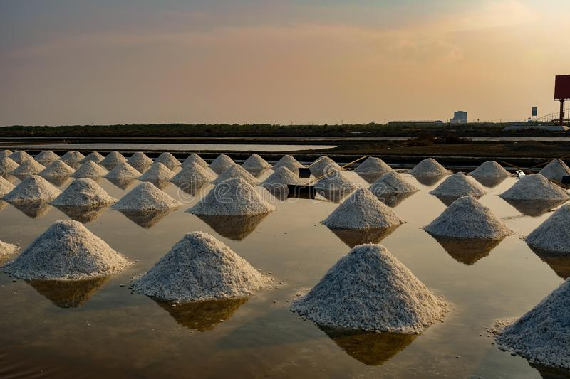 Sea salt field in Thailand. Agriculture asia background beautiful color crystal evaporated evaporation exploration farm food industry ingredient landscape royalty free stock image