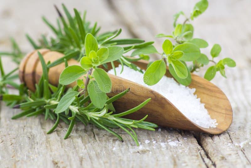 Sea salt and fresh herbs stock photography