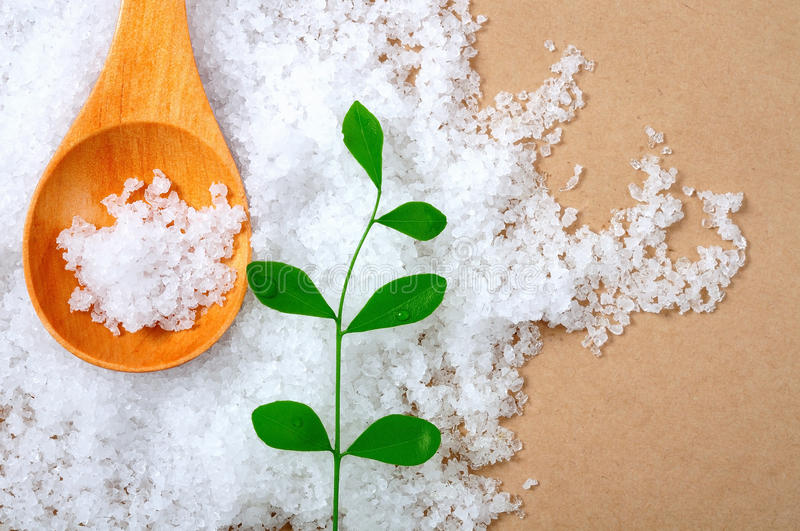 Sea salt royalty free stock image