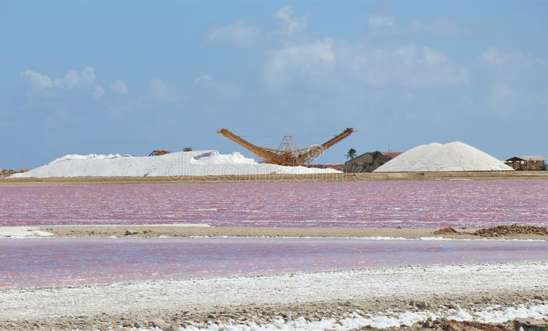 Sea salt piles for harvesting on the island of Bonair royalty free stock images