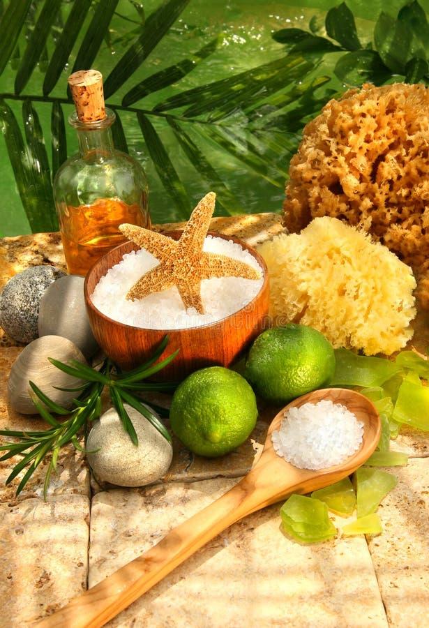 Free Sea Salt, Sponges, Limes And Spa Essentials Stock Image - 5205661
