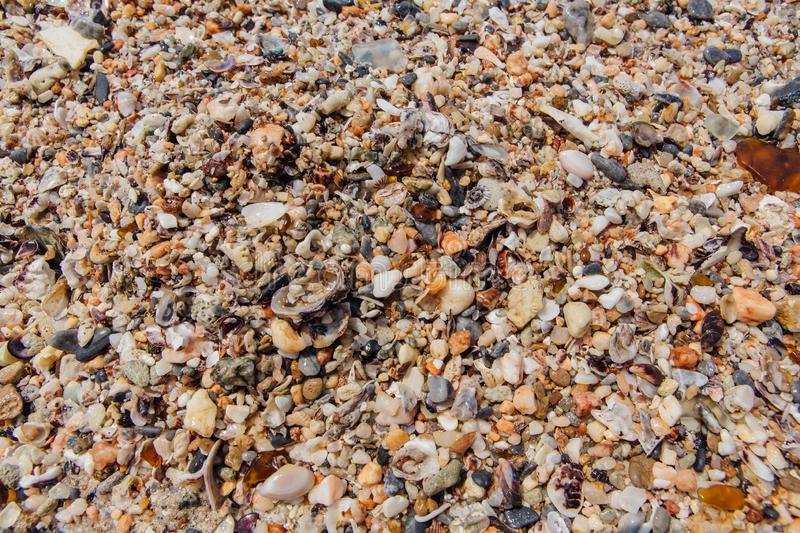 Sea sand texture made of shell and stone pieces. Seamless texture stock images