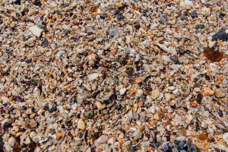 Sea sand texture made of shell and stone pieces. Seamless texture royalty free stock photography