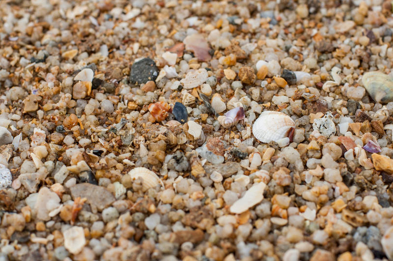 Sea sand texture made of shell and stone pieces. Seamless texture royalty free stock photo