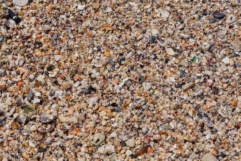 Sea sand texture made of shell and stone pieces. Seamless texture royalty free stock image