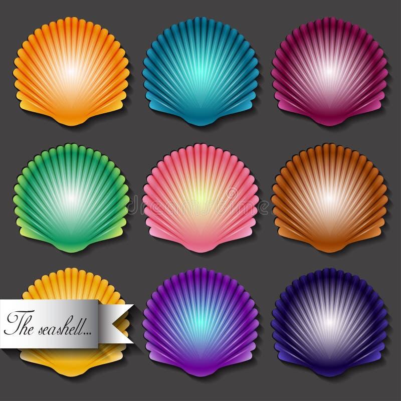 Sea scallop seashell set icon. Vector. royalty free illustration