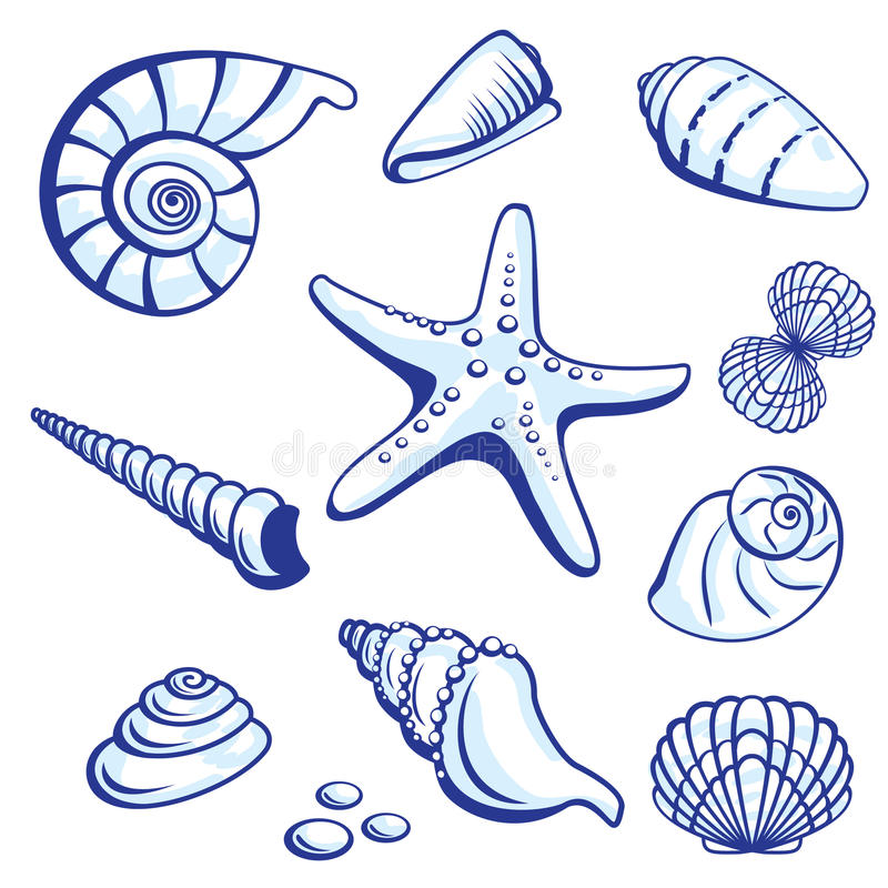 Sea Set. From Starfishes and Cockleshells. Vector illustration on white background vector illustration