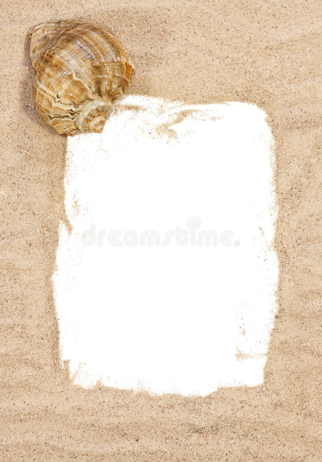 Sea shell with beach sand royalty free stock photos