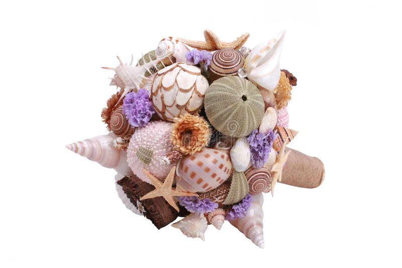 Sea shell boquet. Sea shell bouquet on a white background royalty free stock image