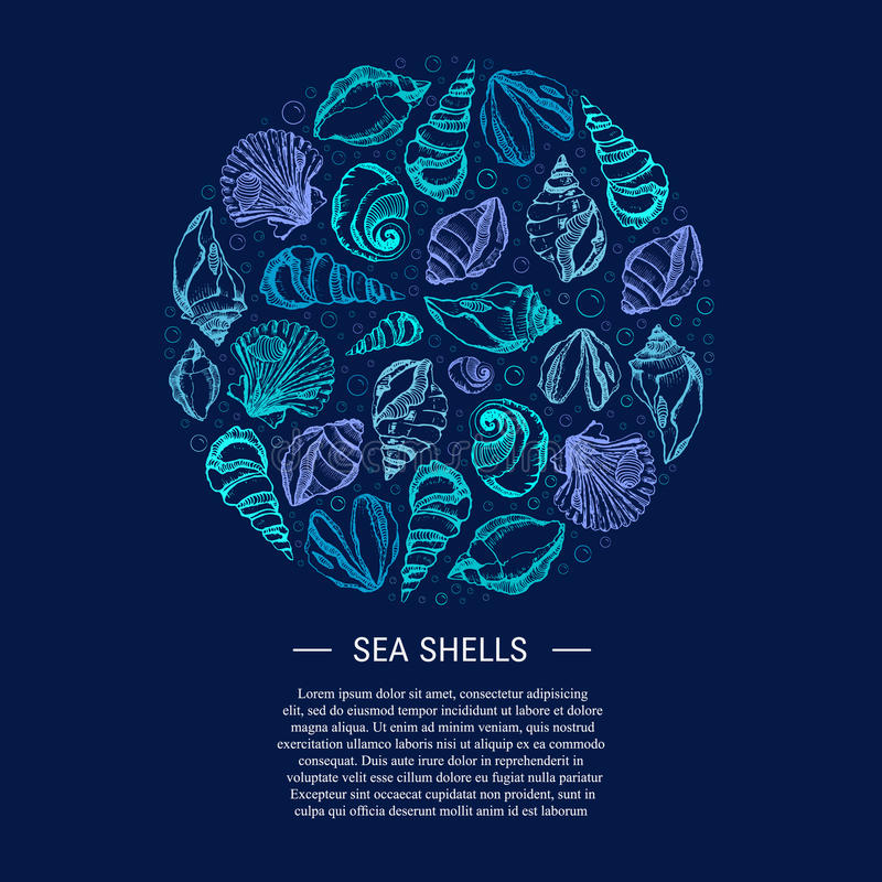 Sea shell circle. Vector background with seashells. Summer circle concept. Hand drawn illustrations. Place for Your Text. Cute postcard design with sea shells stock illustration
