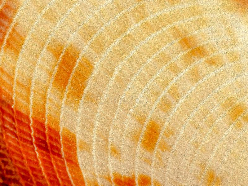 Sea shell close-up texture detail background image royalty free stock image