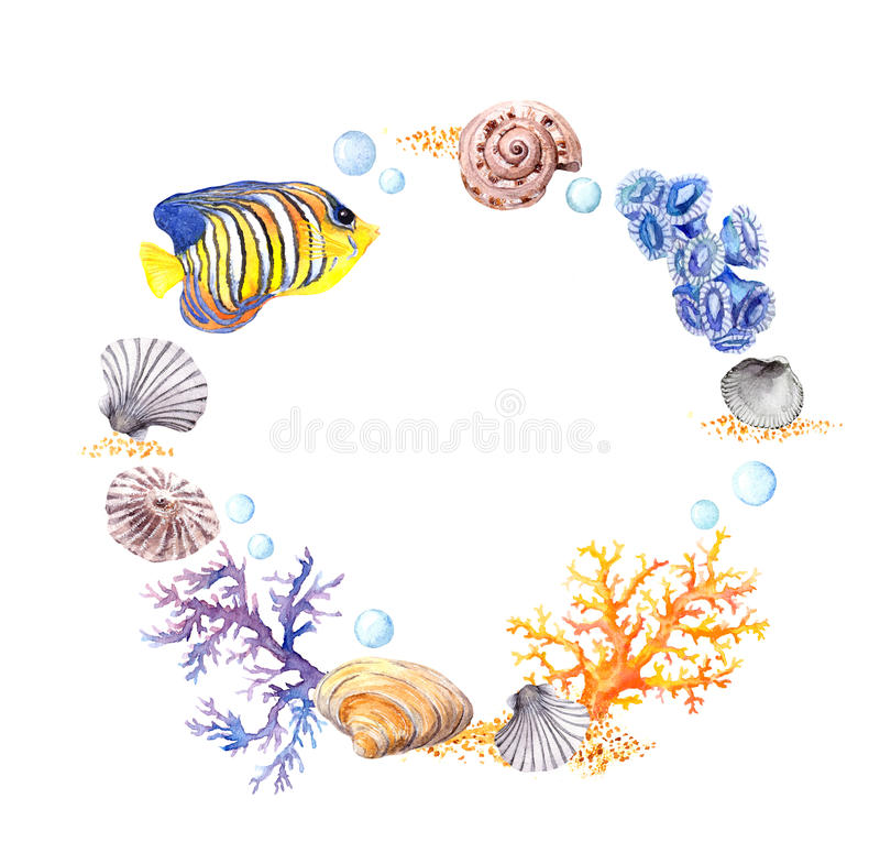 Sea shell, coral, sand. Summer beach wreath border. Watercolor. Sea shell wreath on white background. Watercolor drawing stock photos
