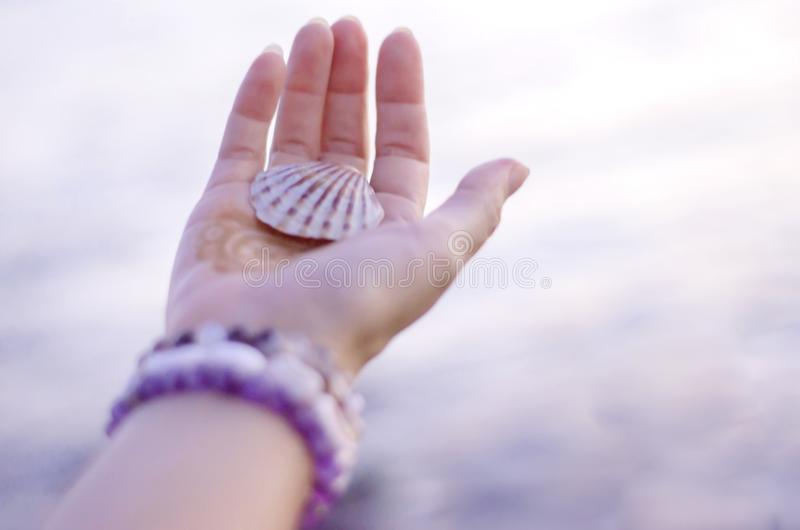 Sea shell on a hand. Sea shell on hand against the background of the sea, Relaxation, peace and pleasant mention of the sea royalty free stock photos