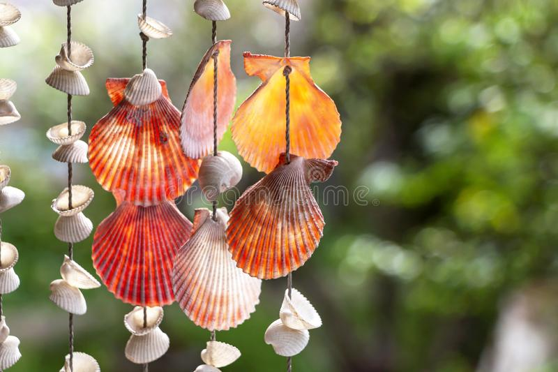 Sea shell hanging on bokeh background. The hanging curtains made of shells are crafts produced by skilled workers.  stock images