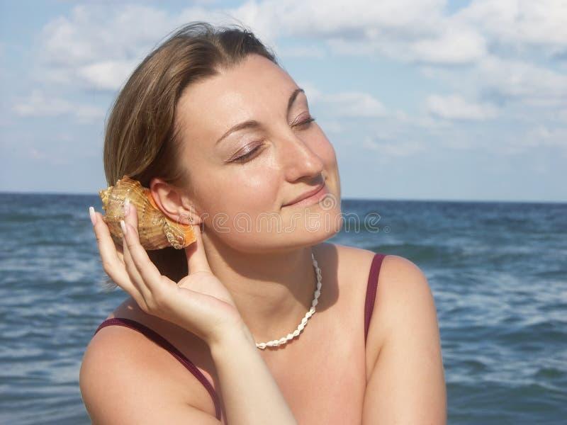 Sea shell murmuring royalty free stock photo