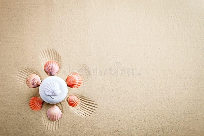 Sea shell on the sea beach. Summer rest. Marine background stock photo