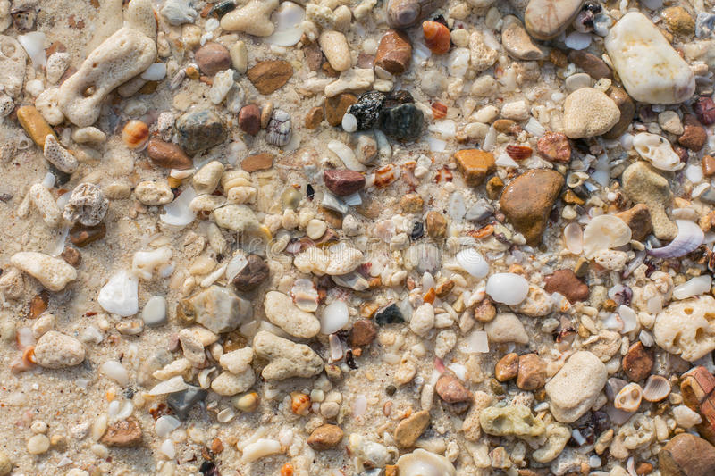 Sea shell and stone pieces texture. Sea sand texture made of shell and stone pieces royalty free stock photos