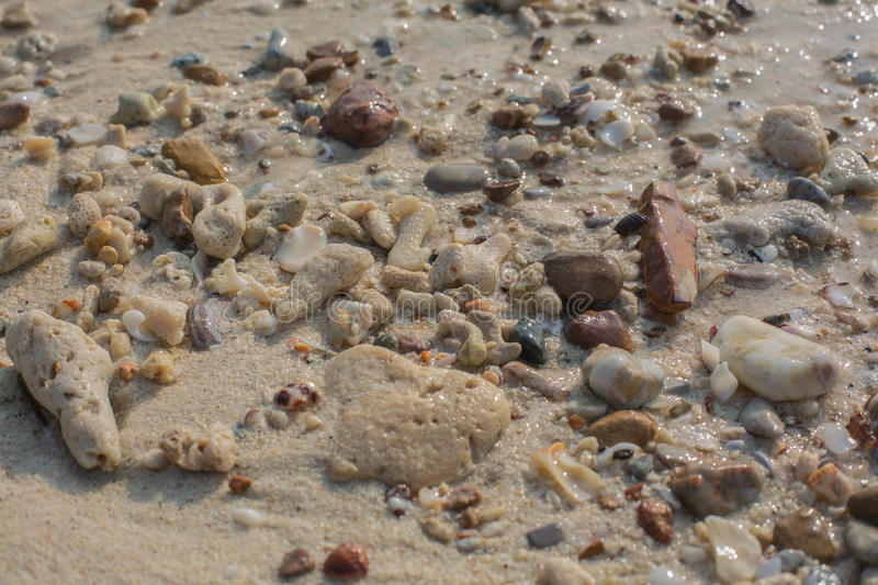 Sea shell and stone pieces texture. Sea sand texture made of shell and stone pieces royalty free stock image