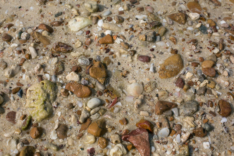 Sea shell and stone pieces texture. Sea sand texture made of shell and stone pieces stock photography