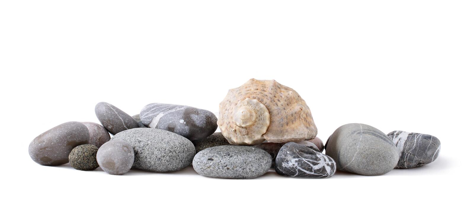 Sea shell and stones collection royalty free stock images