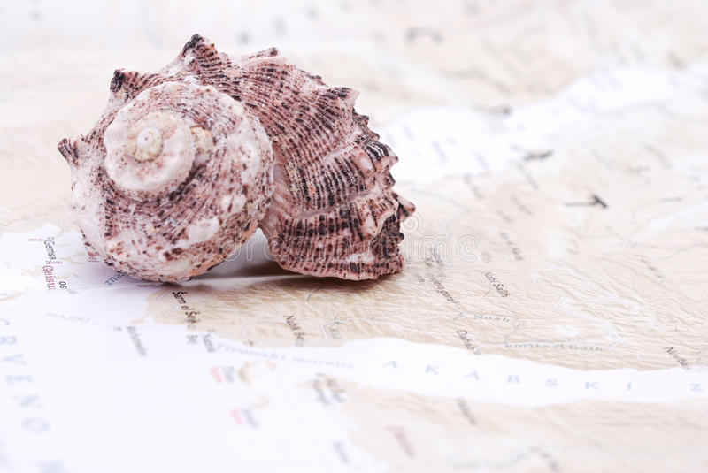 Sea shell on the world map. Tourism concept stock photos