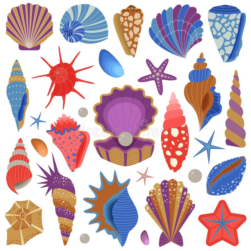 Free Sea Shells And Starfishes Collection Set Stock Photo - 143182390