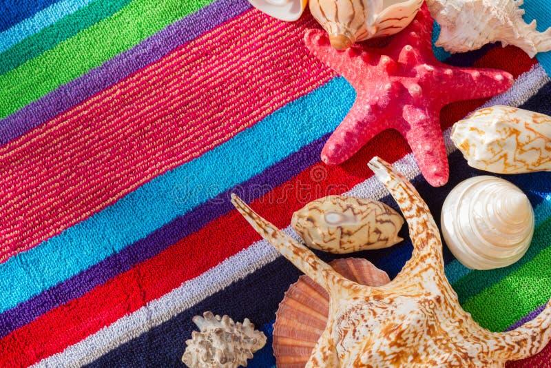 Sea shells on beach towel stock photography