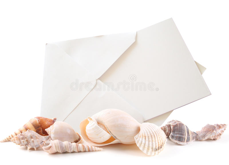 Download Sea shells and Blank Card stock image. Image of message - 11389507