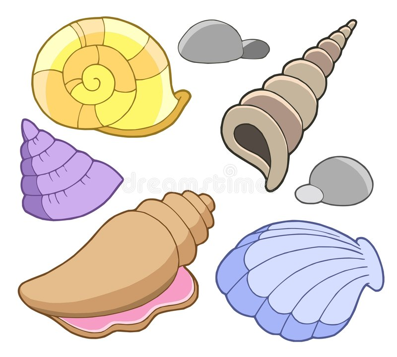 Free Sea Shells Collection Royalty Free Stock Photos - 5971028