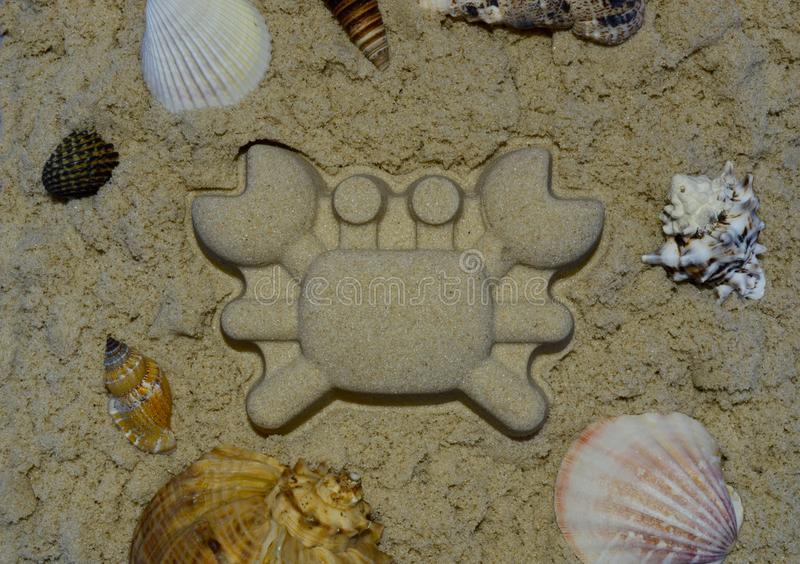 Sea shells with crab made from sand in the center stock photography