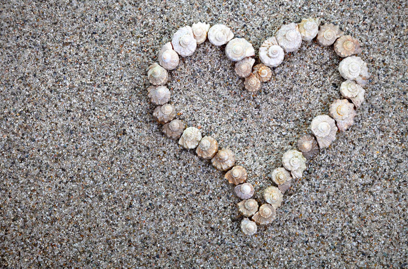 Download Sea shells Heart stock photo. Image of seashell, romance - 32681552