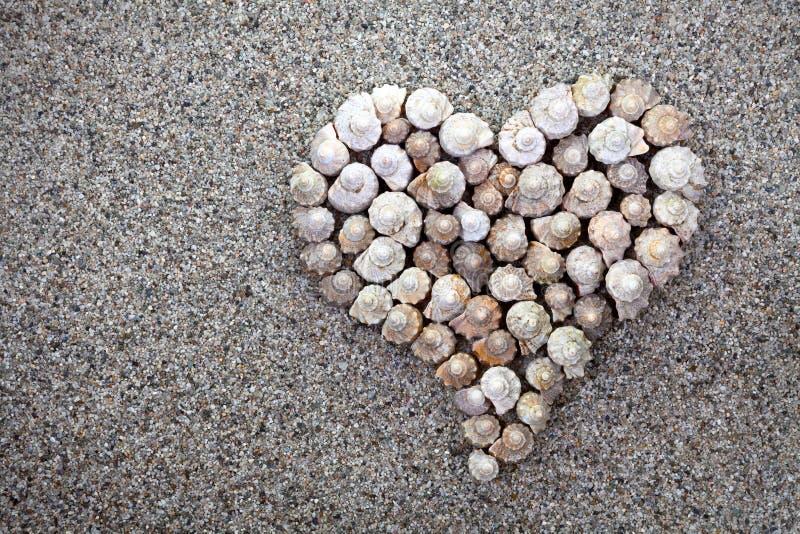 Download Sea Shells Heart Stock Photos - Image: 32681823