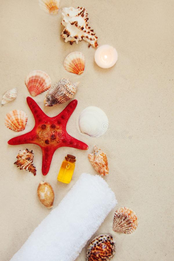 Sea shells and red star fish on sandy beach with copy space for text. Spa salon relax background. royalty free stock photography