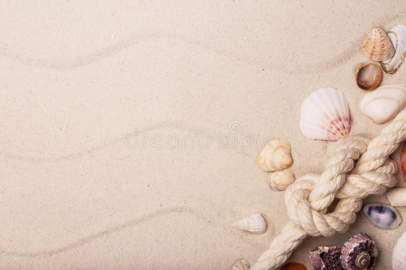 Sea shells and rope on sand royalty free stock image